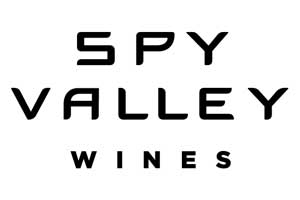 Spy Valley